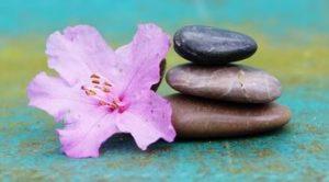 azalea stone - build relationships